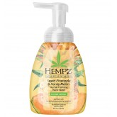 Hempz Sweet Pineapple & Honey Melon Foaming Hand Wash 8oz